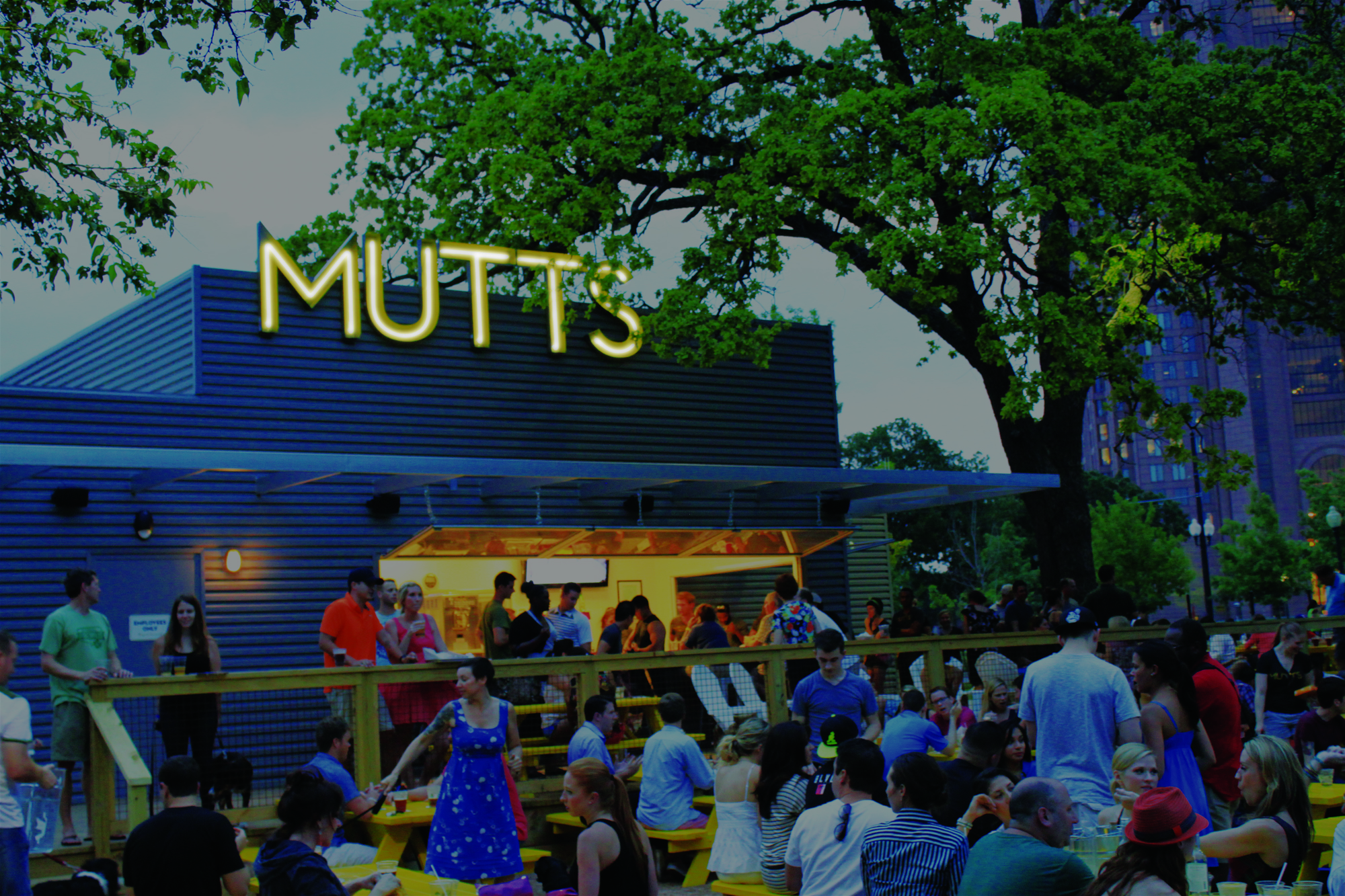 Mutts Cantina